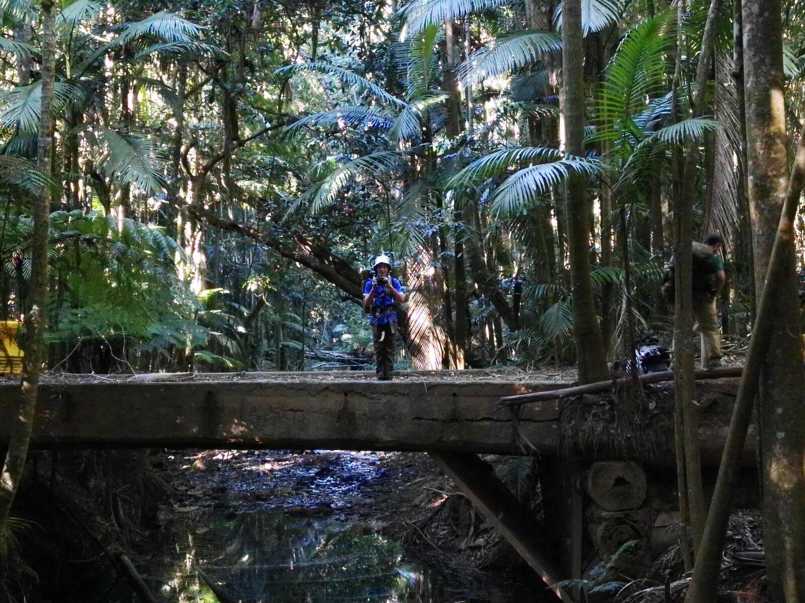 Eidsvold Creek Crossing