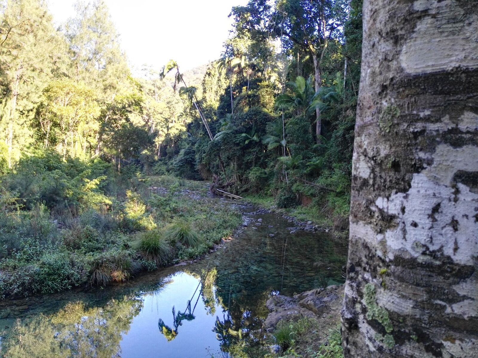 Eidsvold Creek
